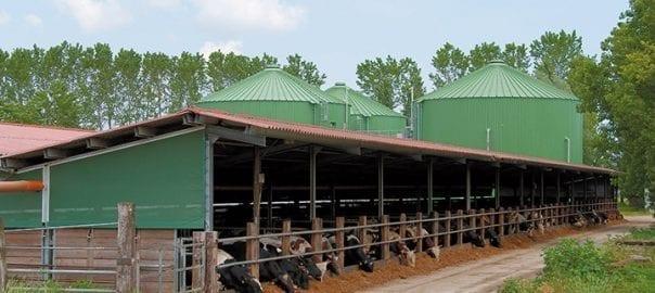 Biogasanlage Landwirtschaft - Lipp System