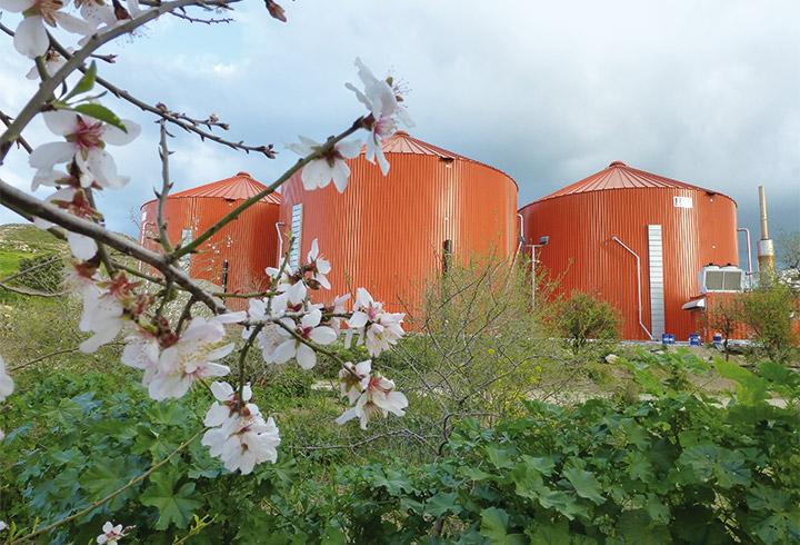 Biogas Plant Digester