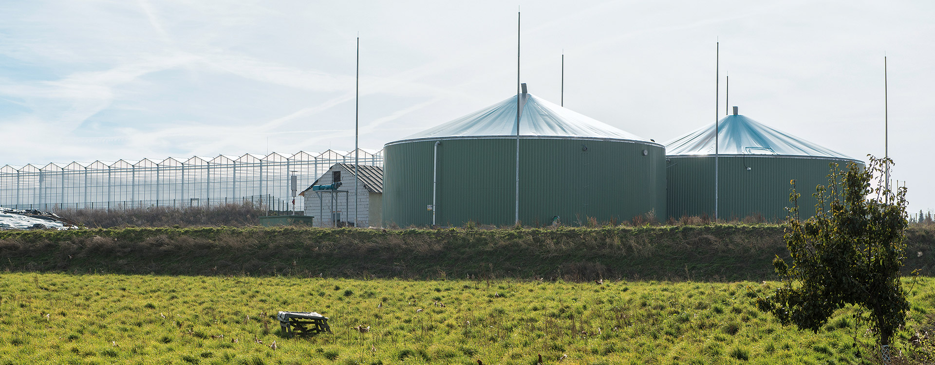 EcoDigester foil roof - Lipp System