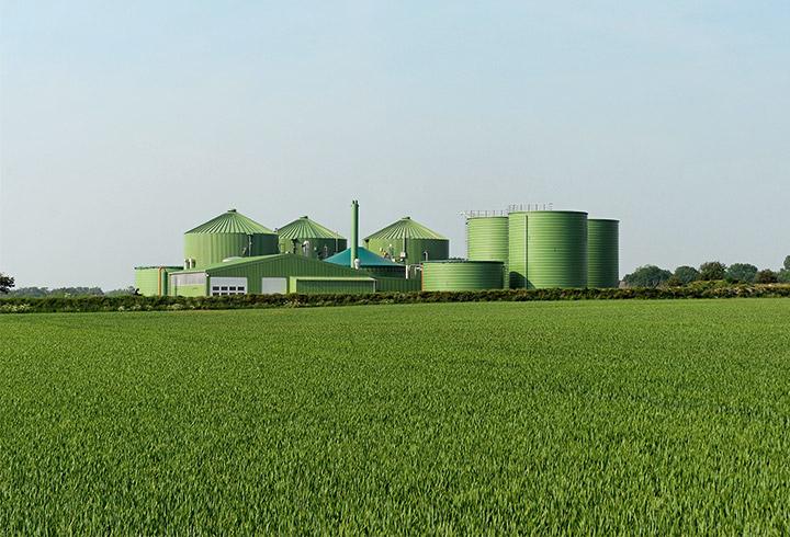 Lipp Biogas Plant