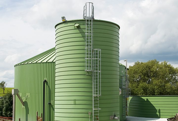 Ruebensilo Biogas - Lipp System