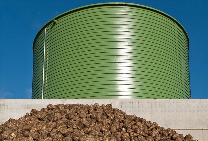 Sugar beet silo - Lipp System